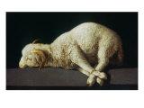 Agnus Dei (Lamb of God) Giclée par Francisco De Zurbarán
