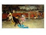 Scene of Bullfight