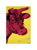 Cow  c1966 (Yellow and Pink)