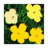 Flowers  c1970 (Yellow)