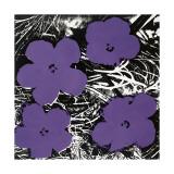 Flowers  c1965 (Purple)