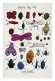 Happy Bug Day  c1954