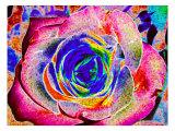 Rainbow-Colored Rose Giclée par Rich LaPenna