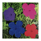 Flowers (Purple  Blue  Pink  Red)