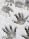 Children's Handprints in a Spring Snow
