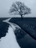 Landscape Photograph  a Winter Scenery in Spanbroek  the Netherlands