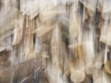 Double Exposure of a Wood Pile