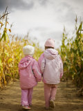 Two Children in Pink  Walking Through Cornfield