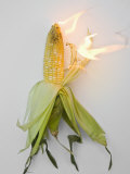 Corn on Fire