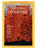Cover of the March  1975 National Geographic Magazine