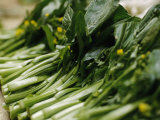 Fresh Cut Bok Choy Greens at the Food or 'Wet' Market