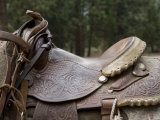Leather Saddle Strapped onto a Horse at King's Canyon National Park