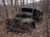 Broken Down and Dilapidated Vintage Truck in a Woodland