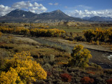 Fall Colors Near Durango  Colorado