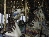 Carousel Horses at Veteran's Park