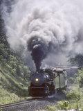 Ex-Southern Railway 2-8-2 No4501 on a Steam Fan Trip