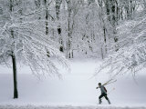 Skier Carries Skis and Poles Through Snow in Schenley Park