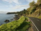 On the Road around the Coromandel Peninsula  New Zealand