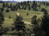 Lone Car Drives Through the &#39;Wildlife Loop&#39; in Custer State Park