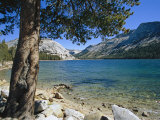 Shore of Tenaya Lake