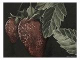 Midnight Strawberries