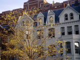 Fall Foliage and Buildings on Connecticut Avenue