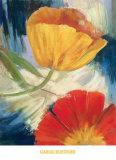 Summer Tulips III