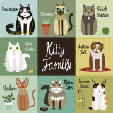 Kitty Family
