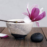Magnolia and Bowl Reproduction d'art par Amelie Vuillon