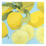Fresh Lemons Reproduction d'art par Martha Negley