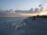 Sunset on Beach  Sanibel Island  Gulf Coast  Florida  United States of America  North America