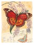 Vintage Botanical Butterfly Print