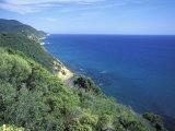 Wild Coast Near Punta Ala  Grosseto  Tuscany  Italy  Europe