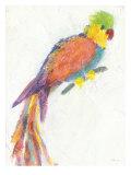 Parrot Extraordinaire