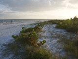 Sunset on Beach  Sanibel Island  Gulf Coast  Florida  United States of America  North America