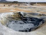 Boiling Mud Pool  Namafjall Geothermal Area  Near Lake Myvatn  Iceland  Polar Regions