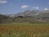 Castelluccio Di Norcia  Norcia  Umbria  Italy  Europe