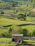 Traditional Barns and Dry Stone Walls in Swaledale  Yorkshire Dales National Park  England