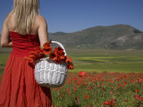 Woman in Poppy Field  Castelluccio Di Norcia  Norcia  Umbria  Italy  Europe