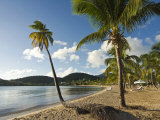 Carlisle Bay  Antigua  Leeward Islands  West Indies  Caribbean  Central America