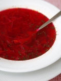 Borscht  a Traditional Russian Beetroot Soup  Moscow  Russia  Europe