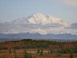 Mount Mckinley (Mount Denali) at Sunset in Fall  Denali National Park and Preserve  Alaska