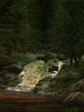 Waterfall in the Fir Wood  c1828