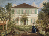 In the Garden of a House in the West Indies  1844