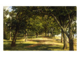 Wood Glade  1889