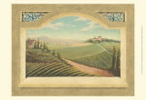 Vineyard Window I
