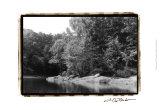 Serene Lake III