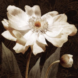 Paisley Blossom I