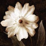 Paisley Blossom II