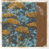 Golden Yarrow II